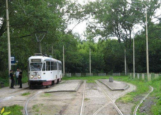 """""""Stodwójka"""" w Lesie Arkońskim"""