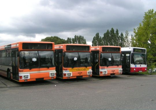 Dąbskie MAN-y ex Braunschweiger Verkehrs-AG