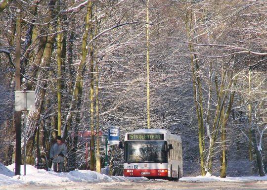 Volvo w śnieżnej scenerii