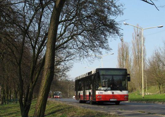 Autobus linii 80 na skraju parku imienia Fryderyka Chopina