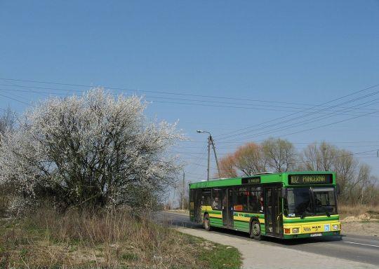Wiosna na Skolwinie - mimo rozkopanej nawierzchni coraz częściej linię 102A obsługuje MAN