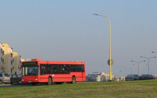 W dniu dzisiejszym na linii 65 barwy autobusów były wyjątkowo zróżnicowane