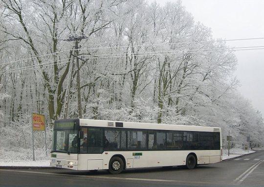 Biały autobus, białe drzewa, tylko asfalt jakiś taki szary...