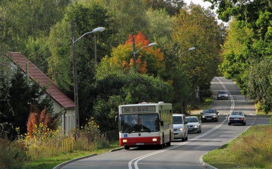 Pierwsze oznaki jesieni przy ulicy Zoologicznej
