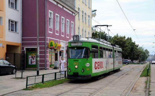 """Zielony jest charakterystycznym kolorem dla stolicy Wielkopolski, a tutaj w mieście z członem """"Wielkopolski"""" jest tylko podkładem"""