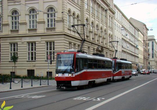 Jeden z tram-bus pasów w Brnie