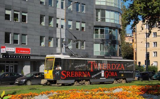 Solowa Tatra w czarnym ubranku wśród kwitnących kwiatów