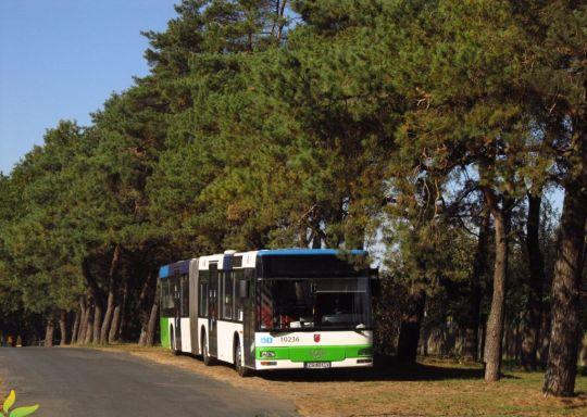 Autobusy PKS Szczecin można spotkać w różnych ciekawych miejscach