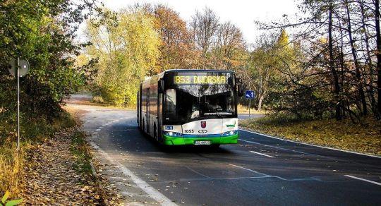 Ładna pogoda, ciekawy autobus i miły kierowca