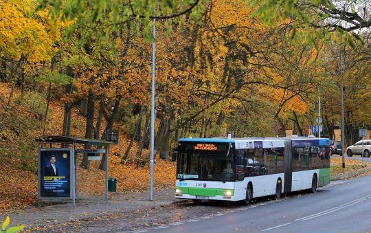 Nie wszystkie autobusy obsługujące linie dodatkowe miały zaprogramowane wyświetlacze