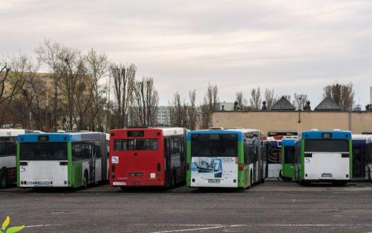 Mercedes pozbawiony numerów taborowych odpoczywa pomiędzy pozostałymi wycofanymi autobusami