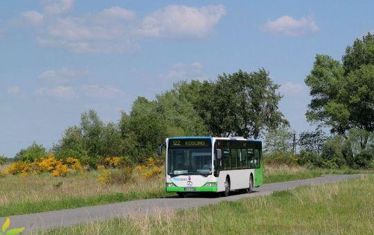 Mercedes na kamieńskich rejestracjach obsługuje linię 122 na terenie gminy Dobra