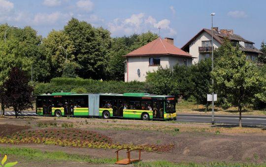 Linia 107 to stałe miejsce pracy dla nowych autobusów przegubowych w Policach