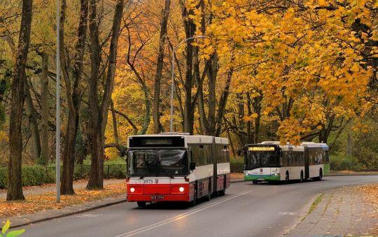 Autobusy Volvo tego dnia jeszcze woziły pasażerów na cmentarz, a za kilka tygodni same trafią na autobusowe cmentarzysko
